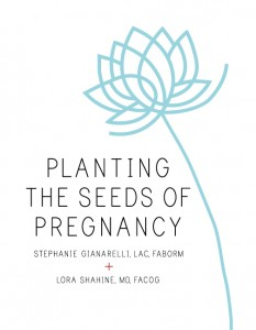 Planeting The Seeds of Pregnancy